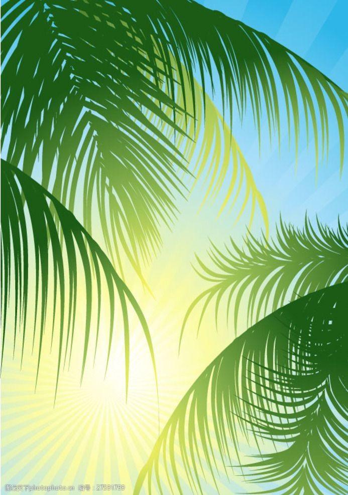 电脑椰子树图片素材好用的平面设计笔记本大王v电脑图片