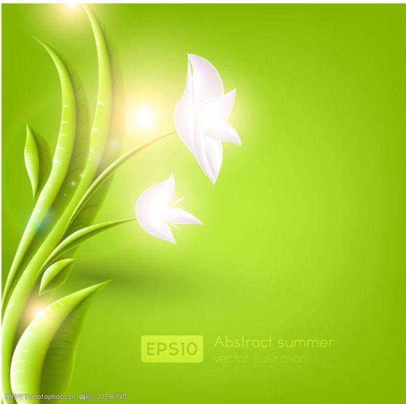 春意浓浓绿叶白花