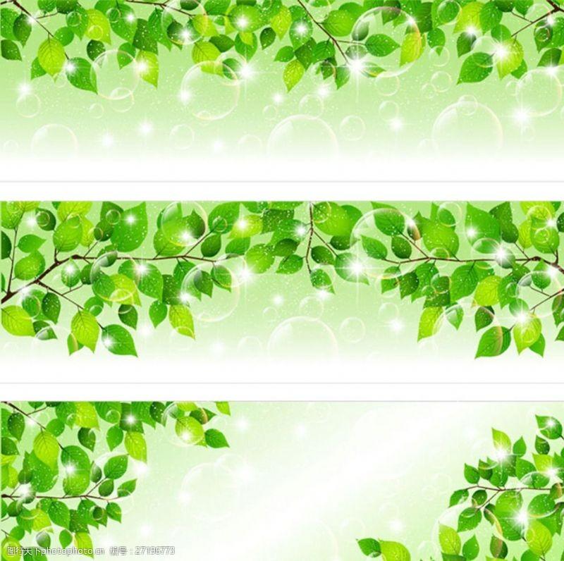 春意浓浓绿叶底纹边