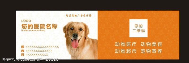 宠物卡片宠物名片