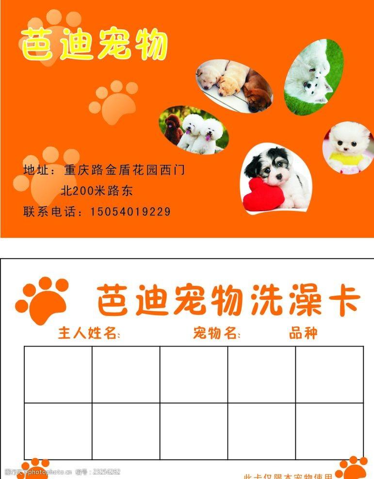 宠物卡片宠物名片洗澡卡