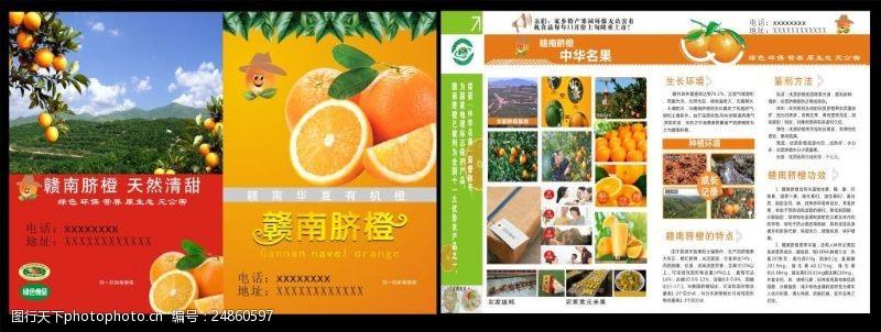 脐橙宣传彩页赣南脐橙传单
