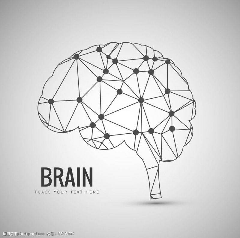 大脑结构设计