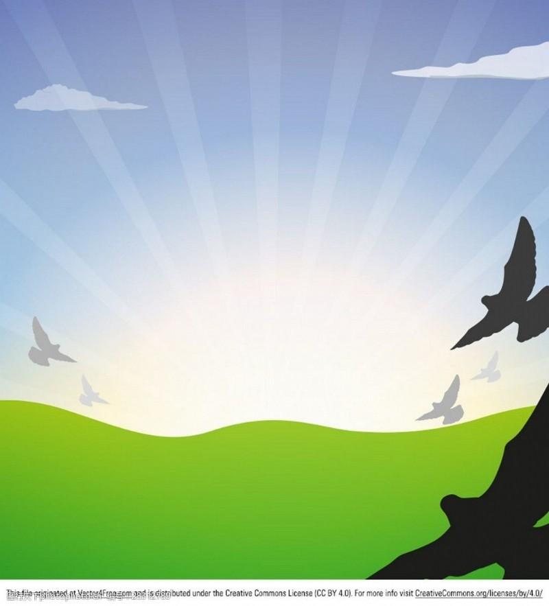 老鹰矢量图草地老鹰飞翔图