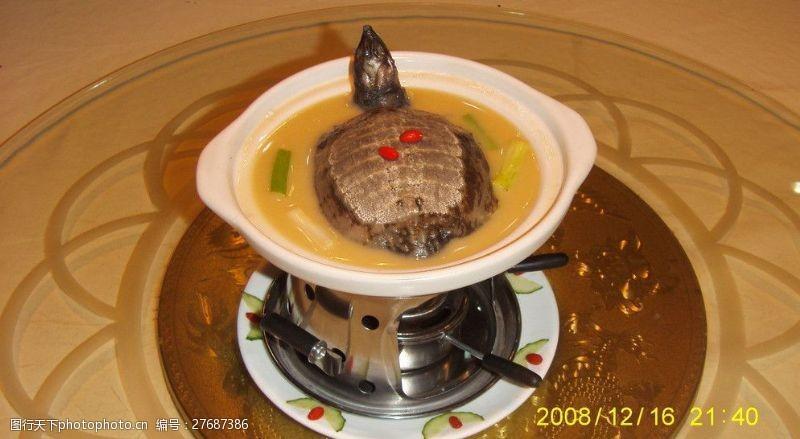 精品菜图清炖甲鱼图片