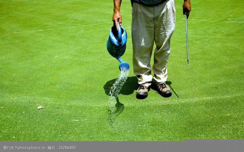 皇室运动高尔夫摄影图片