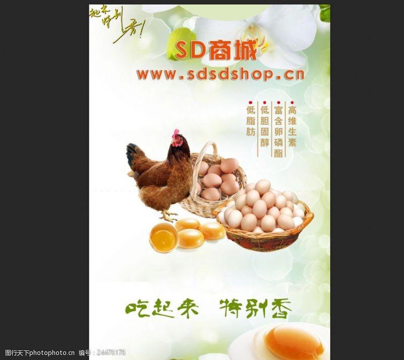 鸡蛋吊牌鸡蛋海报