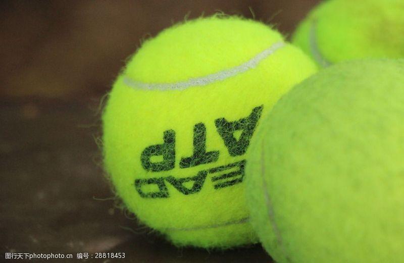 比赛用球网球
